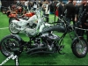 carcrazybikerIMG_7173