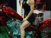 img_4064-carcrazybiker