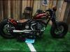 img_4994-carcrazybiker