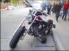 HD Softail cacarzybiker