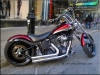 HD Softail  carcrazybiker