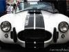 Shelby Cobra carcrazybiker