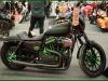 Harley Sportster  carcrazybiker