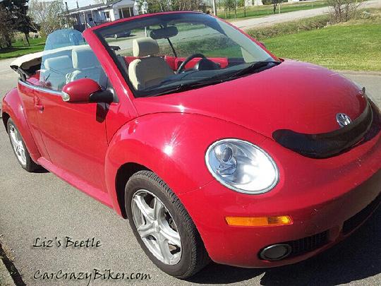 Liz's Beetle